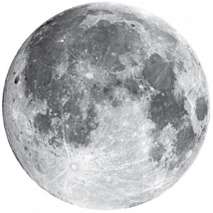 """Full Moon Wall Decal - 22"""" wide"""