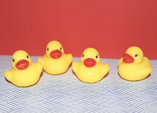 Mini Rubber Duck/Ducky Refrigerator Magnets Set of 4