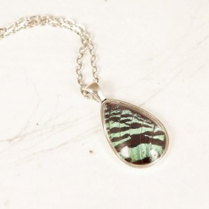 Real Butterfly Jewelry - Real Butterfly Wing Necklace - Green and Black - Real Insect Jewelry - Gift for Her - Tear Drop Pendant