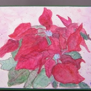 Christmas Card, Hand painted watercolor Poinsettia