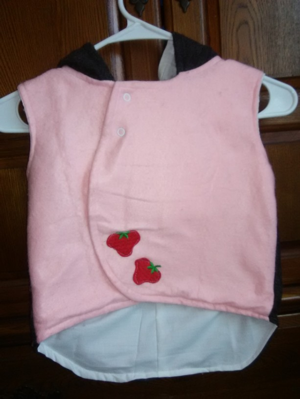 The Strawberry Shortcake Hooded Vest
