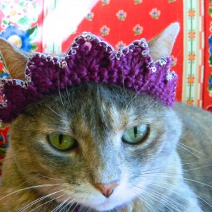 Crochet Crown Tiara for Your Cat or Small Dog