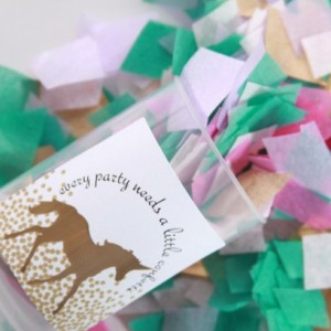 Choose Your Colors Confetti Poppers - Wedding Poppers - Birthday - Team Colors- School Colors - Custom Party Poppers - Metallics