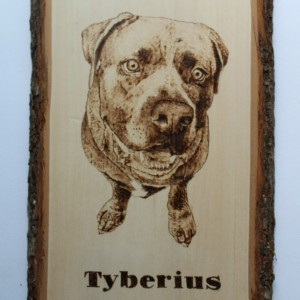 Custom Pet wood burning - art