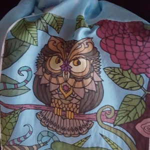 Whimsical Owl 8x54 8mm Habotai Silk Scarf Hand Painted/Dyed using the French Serti Technique