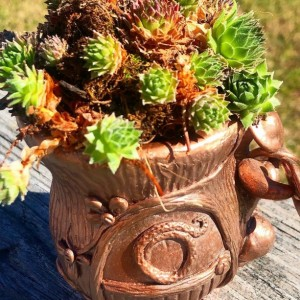 Hand Crafted Fairy House Planter - Votive Holder - Cut Flower Vase - Mushrooms Growing Out of a Stump - Bronze Rose Gold Copper Finish