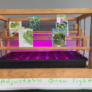 Lighted and heated seed starter