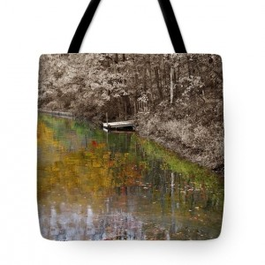 Reflections of Youth Tote Bag