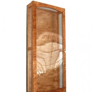 Guitar Display Case in beautiful Tiger maple