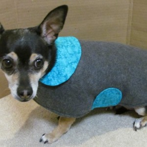 Dog Coats for Small, Medium and Large dogs