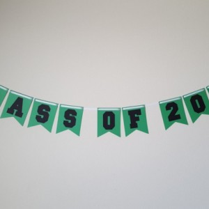 Graduation Party Decorations, Class of 2016 Banner, Grad, Congrats Grad Banner, 2016, Class of 2016, Graduate, Graduate Banner, Graduation