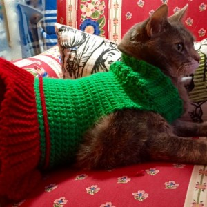 Crocheted Christmas Sweater for Cat or Small Dog - Red/Green Turtleneck Ruffled Skirt Pet Wear