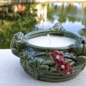 Scented Soy Candle in Frog Ceramic Pot