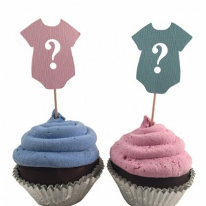 Pink & Blue Question Mark Gender Reveal Cupcake Toppers - Set of 12