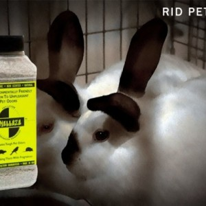 SMELLEZE Natural Rabbit Smell Removal Deodorizer: 50 lb. Granules Eliminate Pet Stink