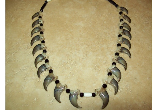 20 Count Real Bear Claw Necklace Native American Made Aftcra