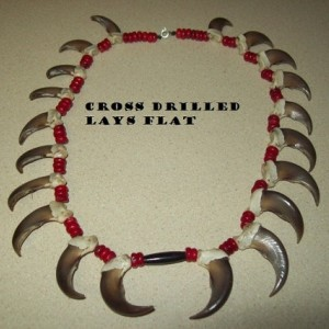 Real Bear claws FULL SET 20 claws for sale