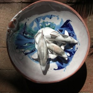 Bottlenose Dolphin Terracotta Footed Bowls No.1