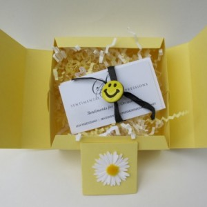 Sentimental Expressions Smile Boxes- 10 quotes and sayings on individual cards, elegantly wrapped in a beautiful designed package