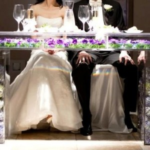 Acrylic/Lucite Bridal Table (Wedding Acrylic Furniture)
