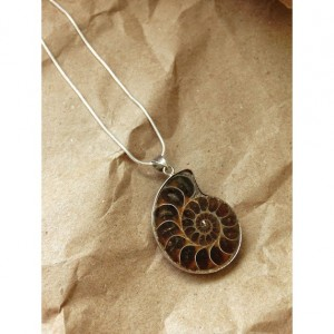 "Ammonite Sterling silver necklace stone fossil sterling silver 24"" chain"