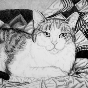 Custom Pet Portrait graphite pencil. 5x7. Any animal! Dog portrait, cat portrait, horse portrait. pencil portrait, ooak gift, pet drawing