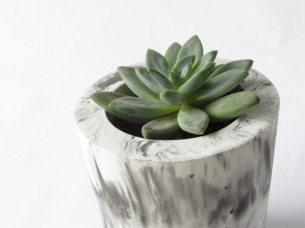 Tall Concrete Succulent Planter And Vase White And Black