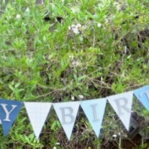 Blue Birthday Party Package
