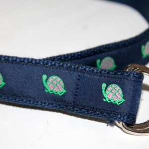 Kids Turtle Belt