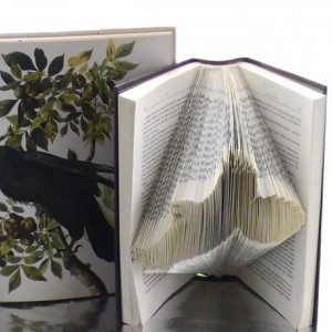 Crow Book Origami