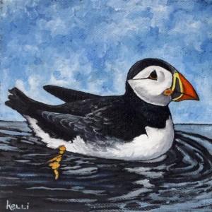 """Atlantic Puffin"" original oil painting"