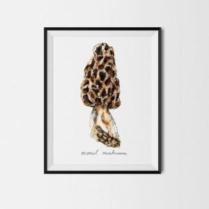 8x10 Michigan Mushroom Print, Restaurant Art, Food Illustration, Kitchen Decor, Morels Painting, Art Print, Morel Mushroom Print, Nature Painting