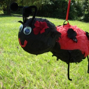 Super Cute Flowering LadyBug Pinata - Birthday, Shower, Summer, Party, Event