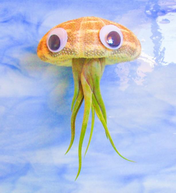 Jellyfish Air Plant Holders 4 Pack: JUMBO AIR PLANT HOLDER