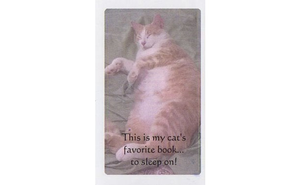 SLEEPING ORANGE CAT Bookplates-Set of 5 self stick bookplates-