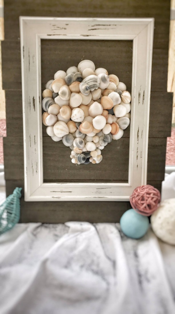 Seashell Wall Decor