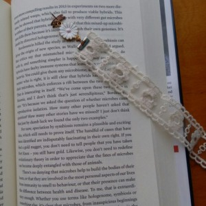 Ribbon Bookmarks- Set of 4