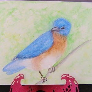 Bluebird Watercolor Card