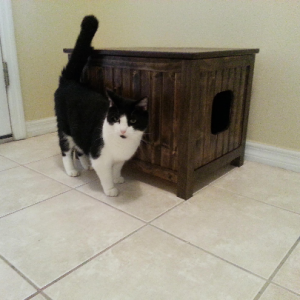 Small, Odor Free, Custom, Hand Made in USA, Wood Cat Litter Box Chest. No Assembly Needed. Not MDF