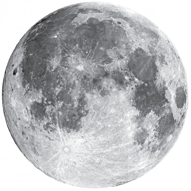 "Full Moon Wall Decal - 22"" wide"