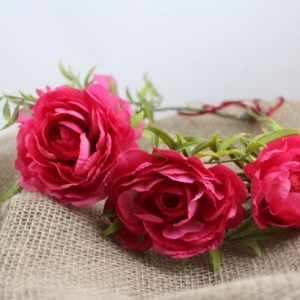 Pink Ranunculus Crown