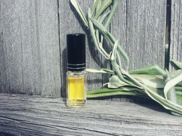 Demure, Floral Spray Perfume for Women Florals, Citrus, Jasmine, Bourbon Vanilla, Indian Sandalwood, Vetiver, Patchouli, Fine Fragrance 6 ml
