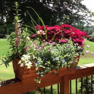 Arched Deck Rail Planter Box