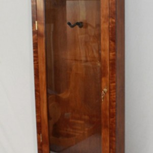 Electric Guitar wall mounted display case