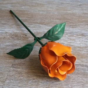 Orange Steel Rose