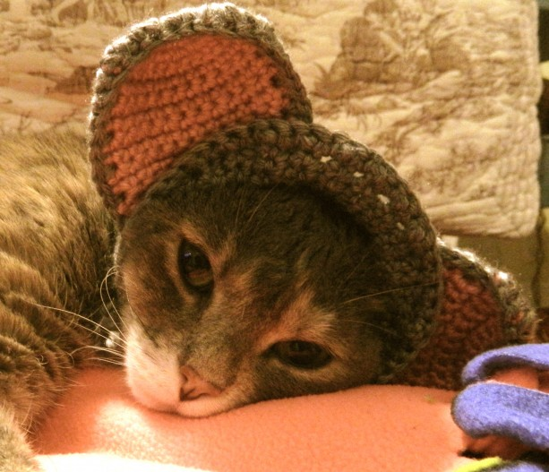 Crocheted Mouse Hat for Your Cat or Small Dog - Pet Costume - Photo Prop