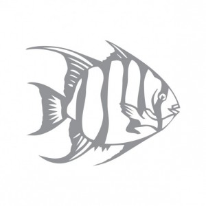 Tropical Fish Design Two - Coastal Design Series - Etched Decal - Shower Doors, Sliding Glass Doors & Windows - Available in different sizes