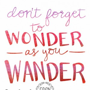 "18x24 Wanderlust hand-lettered quote ""Don't Forget to Wonder as you Wander"" poster travel adventure"
