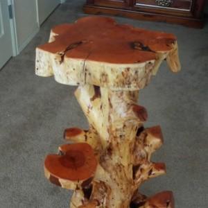 Juniper stump decor table