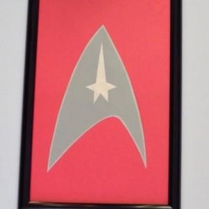 Star Trek Dry Erase Note Board